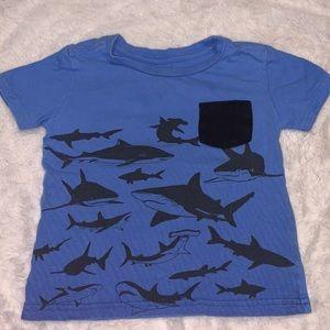 PEKKLE shark tee (2 for $10)